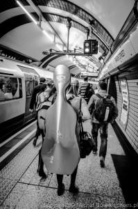 violin-101
